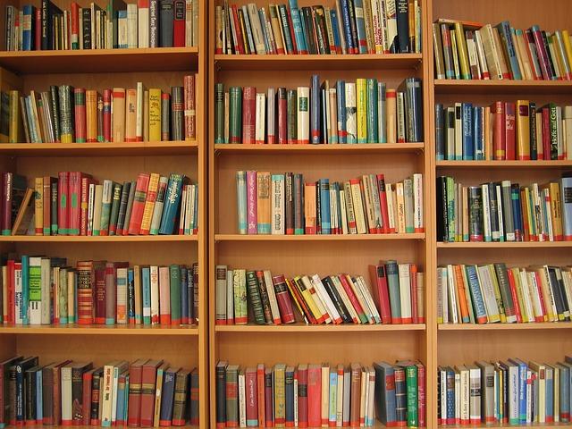 książki kryminalne - półka z książkami